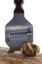 Dure witte truffel van alba en staalsnijmachine Royalty-vrije Stock Afbeeldingen