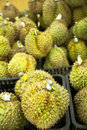 Durian Stock Photos