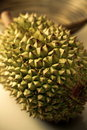 Durian Royalty Free Stock Photography