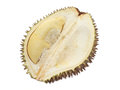 Durian close up of peeled isolated on white background Royalty Free Stock Photography
