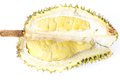 Durian cut and isolated on white background Royalty Free Stock Photo
