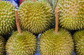 Durian en ventes Photo stock