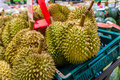 Durian fresh sell in supermarket Stock Images