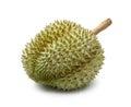 Durian fruit Royalty Free Stock Photo