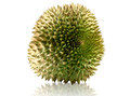 Durian fruit isolated on white background Stock Photo