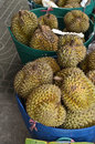 Durian fruit local tropical in fresh market of thailand Royalty Free Stock Images