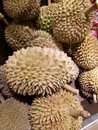 Durian Fruit Royalty Free Stock Photo