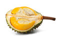 Durian fruit on white Stock Image