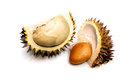 Durian is the king of fruits Stock Image