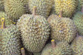 Durian on the market in thailand Stock Photos