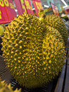 Durian sell on the shelf Royalty Free Stock Photography