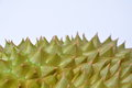 Durian thorn texture and background Royalty Free Stock Photo