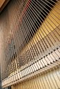 Dusty old piano Strings Royalty Free Stock Image