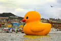 Dutch artist florentijn hofman's rubber duck in keelung installation taiwan from dec Royalty Free Stock Photography
