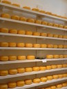 Dutch Cheese Royalty Free Stock Photos