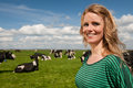 Dutch girl in field with cows Royalty Free Stock Images