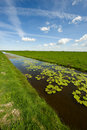 Dutch landscape Royalty Free Stock Photos