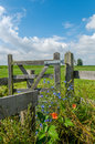 Dutch landscapes baarn utrecht wooden fence in landscape against cloudy blue sky Royalty Free Stock Photography