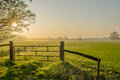 Dutch landscapes barneveld gelderland country gate and green pasture in early morning light Royalty Free Stock Photos