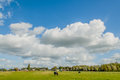 Dutch landscapes maurik gelderland view of polder landscape with farms and grassland against a blue cloudy sky background at the Royalty Free Stock Image