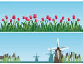 Dutch landscapes with windmills and tulips Stock Photo