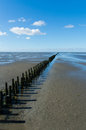 Dutch mud flats coastal feature of the Stock Image