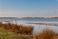 Dutch National Park De Biesbosch Stock Photo