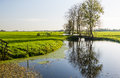 Dutch polder landscape in autumn typical with low sunlight Royalty Free Stock Image