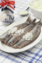 Dutch raw herring with onions on a dish Royalty Free Stock Photo