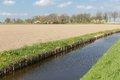 Dutch rural landscape with ditch and farmland beautiful Stock Photography
