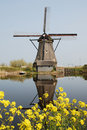 dutch windmill reflected Royalty Free Stock Photo