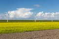 Dutch windturbines behind a yellow coleseed field Royalty Free Stock Image