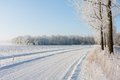Dutch winter farmland covered with snow Royalty Free Stock Image