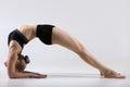 Dvi pada viparita dandasana sporty beautiful young woman practicing yoga doing variation of bridge pose on elbows two legged Royalty Free Stock Photography