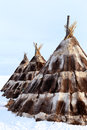 The dwelling from a skin of deer traditional aboriginals north siberia reindeer breeders nenets Royalty Free Stock Photos