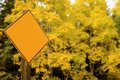 Dynamic energetic Aspen Sign Autumn leafs Royalty Free Stock Photo