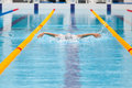 Dynamic and fit swimmer in cap breathing performing the butterfly stroke Royalty Free Stock Photo