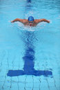 Dynamic and fit swimmer performing the butterfly stroke professional swimming dolphin style in cristal water swimming pool Stock Photos