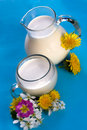 Dzbanka szklany mleko Zdjęcia Royalty Free