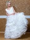 Dziewczyna z ślubną suknią portrait maksimum Obraz Stock