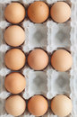 E for Eggs Stock Images
