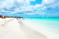 Eagle beach on Aruba island Royalty Free Stock Photo