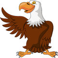 Eagle cartoon Stock Photos