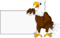 Eagle cartoon with blank sign vector illustration of Royalty Free Stock Photo
