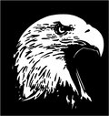 Eagle cartoon design vetora clipart Foto de Stock Royalty Free
