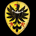 Eagle Emblem,  Old Shield Royalty Free Stock Photo