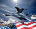 Eagle and fighter