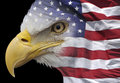 Eagle and flag Royalty Free Stock Photo