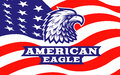 Eagle head logo - vector illustration on american flag background
