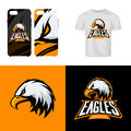Eagle head sport club isolated vector logo concept